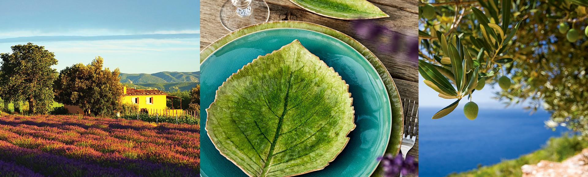 フランスのフラワーアーティスト、クリスチャン・トルチュのプロデュース。地中海のリゾート地リヴィエラの自然にインスパイアされてデザインされたRIVIERAの食器シリーズ。